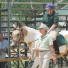 Prince George's Show Place Arena hosts Equestrian Competition June 01st, 2013